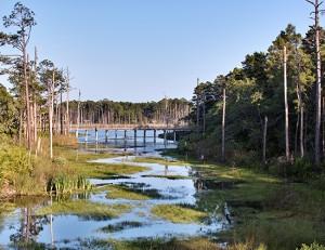 Florida Panhandle's Best Kept Secret - Coastal Dune Lakes