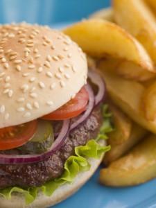 shades burger and fires